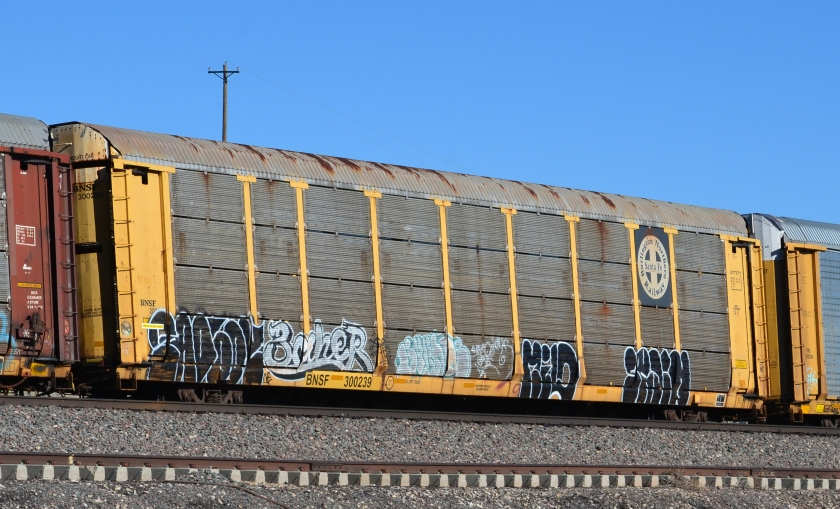 BNSF 300329